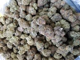 BUY Grand Daddy Purple