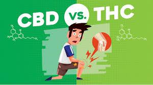 Buy THC vape online Melbourne Buy Pure cannabis oil online Queensland Buy Pure CBD oil online Perth Buy pains killer online Australia
