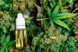 Order marijuana Jeddah Saudi Arabia