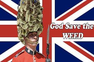 Buy Marijuana in England